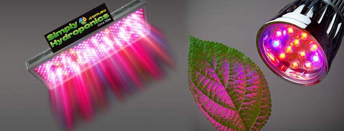 Led Lighting for Hydroponics